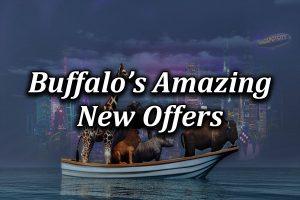 Buffalo casino affiliates